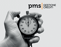 PMS Gestione Crediti